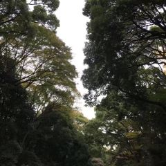 新宿御苑用戶圖片