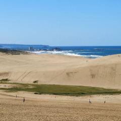 鳥取砂丘用戶圖片