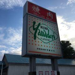 YAMADORI User Photo