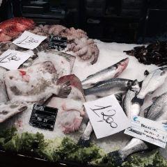 魚市廣場用戶圖片