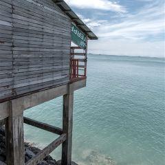 天鵝島用戶圖片