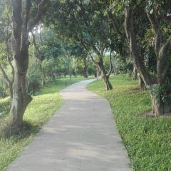 Shouxi Park User Photo