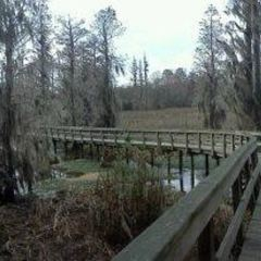 Phinizy Swamp Nature Park User Photo