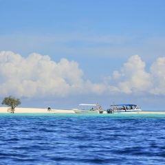 潘達南島用戶圖片