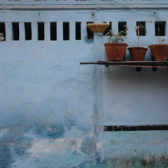Udaipur Art Villa用戶圖片