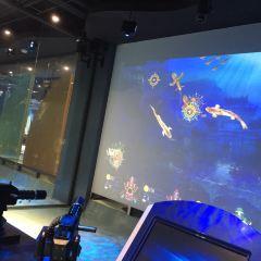水下古城文化科技主題樂園用戶圖片