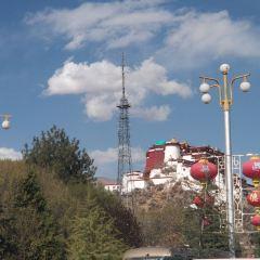 西藏電視臺用戶圖片