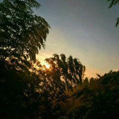 Zeya Scenic Aera User Photo