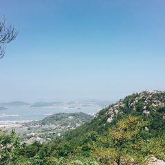 유달산 여행 사진