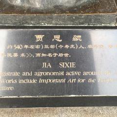 賈思勰雕塑用戶圖片