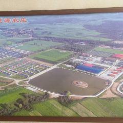 右玉縣生態旅遊區用戶圖片