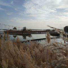 紅海灣景區水上樂園用戶圖片