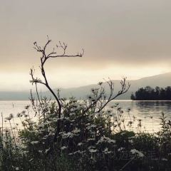 阿寒湖畔生態博物館中心用戶圖片