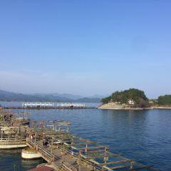 Moonlight Island User Photo