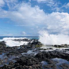 拉帕·努伊國家公園用戶圖片