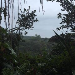 아카카 폭포 주립공원 여행 사진