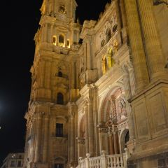 La Santa Iglesia Catedral Basílica de la Encarnacion User Photo