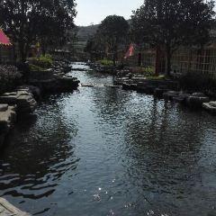 秀水景區用戶圖片