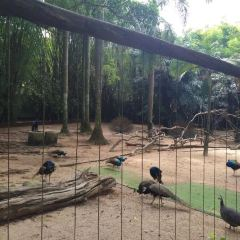 動物園用戶圖片