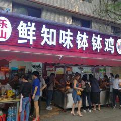 Le Shan Xian Zhi Wei Bo Bo Ji User Photo