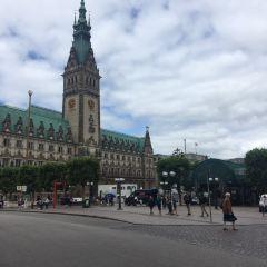 Hamburg City Hall User Photo