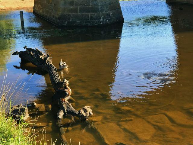 里士满石桥