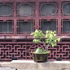 台北孔廟用戶圖片