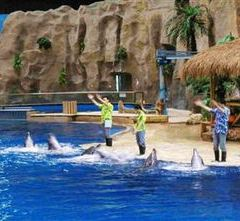 西寧野生動物園海洋館用戶圖片