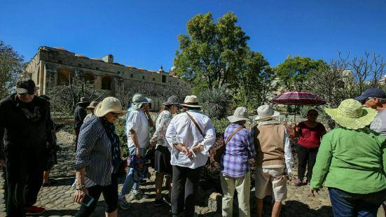 瓦哈卡的民族植物学博物馆是一处大型的户外植物园。这里生长着许