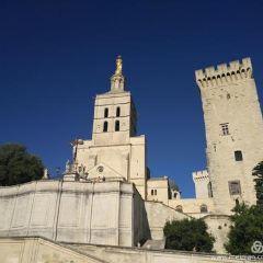 阿維尼翁聖母大教堂用戶圖片
