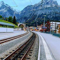 Grindelwald User Photo