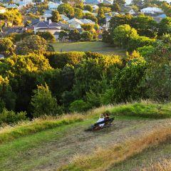 Mount Victoria Reserve User Photo