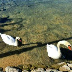Lake Worthersee User Photo