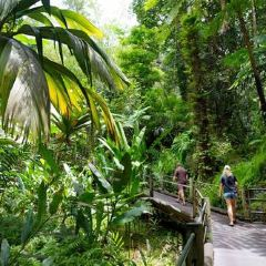 Hawaii Tropical Botanical Garden User Photo