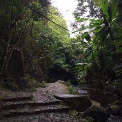 Panlongxia Ecological Tourism Zone User Photo
