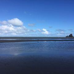Takapuna Beach User Photo