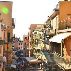 Corniglia User Photo