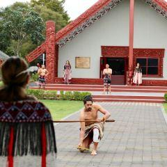 Te Puia User Photo