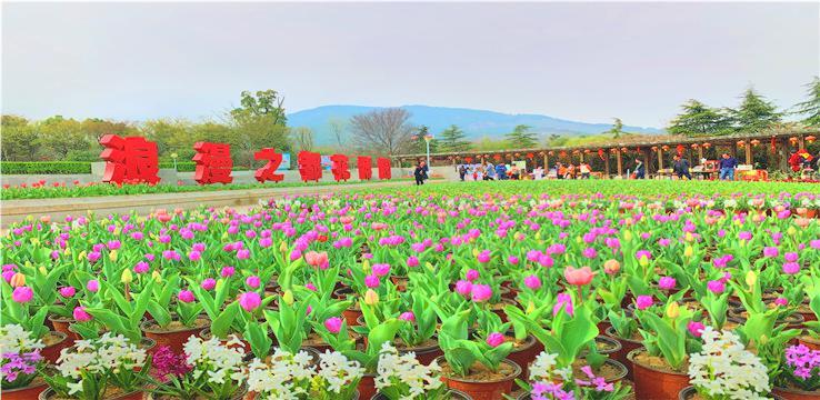 蚌埠花博園