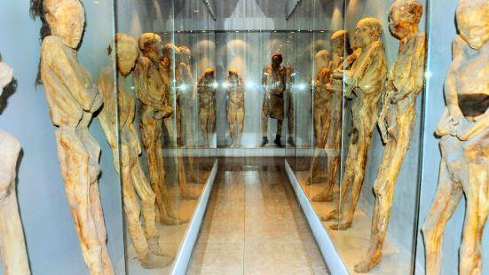 Mummy Museum (Museo de los Momias)