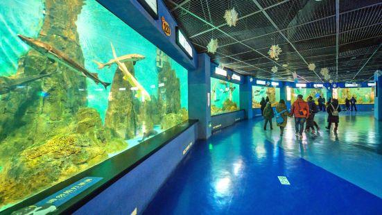 老虎灘極地海洋動物館