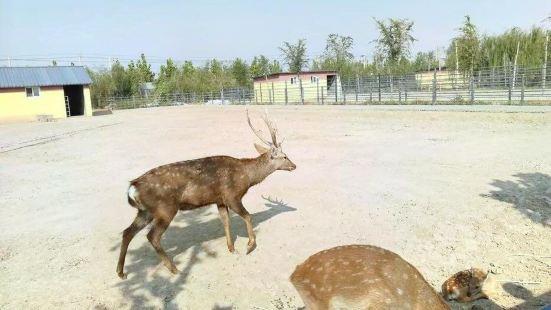 濱河野生動物世界
