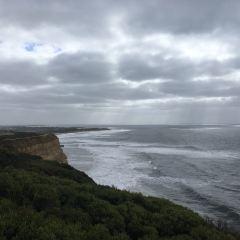 Bird Rock Lookout User Photo