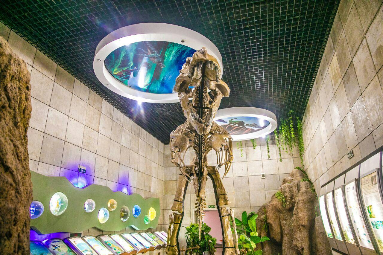 諸城恐竜博物館
