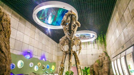 Zhucheng Dinosaur Museum