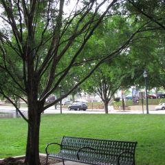 Candler Park User Photo