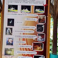 象山溶洞用戶圖片
