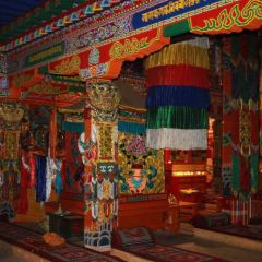 紮藏寺用戶圖片