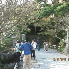 壽福寺張用戶圖片