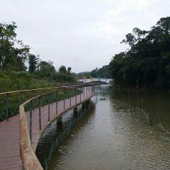 Qingyang Park User Photo
